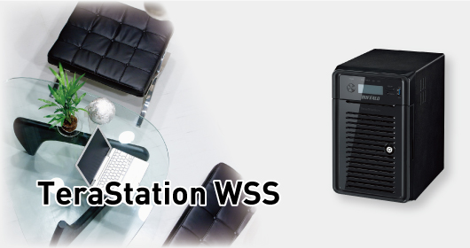 TeraStation WSS series